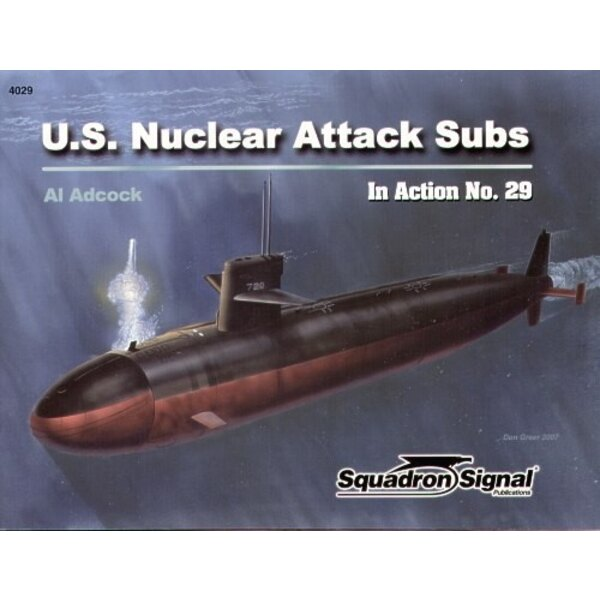 US Nuclear Attacks (In Action Series)