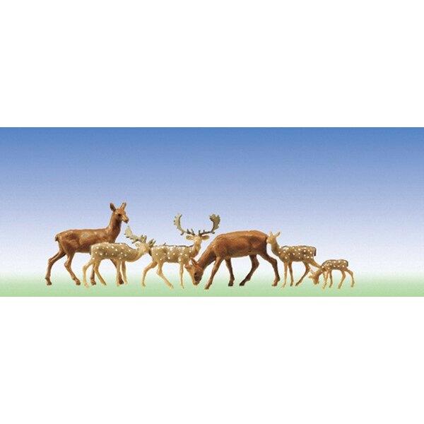 Fallow deer + red deer, 12 pieces