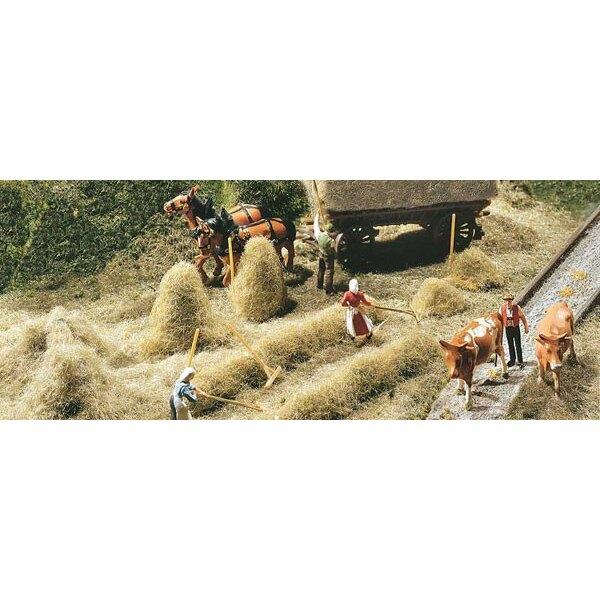 Hay-harvest
