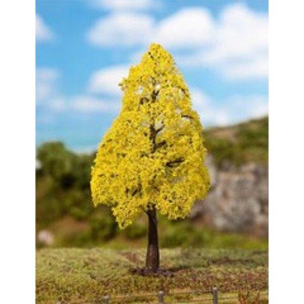 1 PREMIUM Oak, Autumn foliage