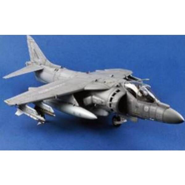 McDonnell-Douglas AV-8B Harrier II (costruito e verniciato) - Lunghezza 780 millimetri, 508 centimetri di apertura alare