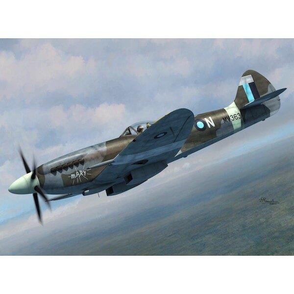 Supermarine Spitfire FR Mk.XIVE.4 versioni decalcomanie.Le ali per la versione E, ali standard e tagliate.